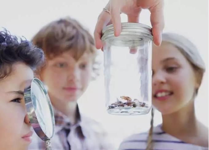 同学们勘察有害微生物